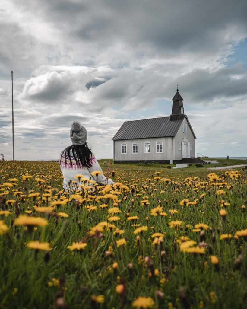 ingjaldsholskirkja-flowerfield-blumenfeld-sonnenblumen-sun